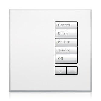 Lutron UK Homeworks QS International SeeTouch Keypad